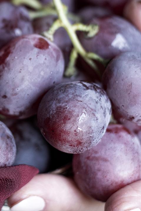 chicco d'uva